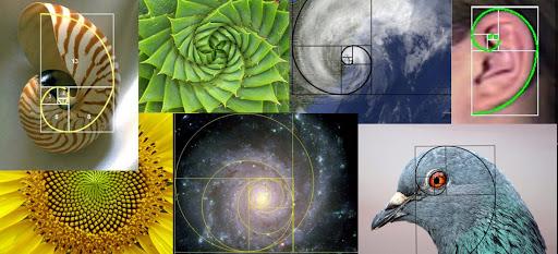 Matemática y su Didáctica II - 3° E.PRIMARIA